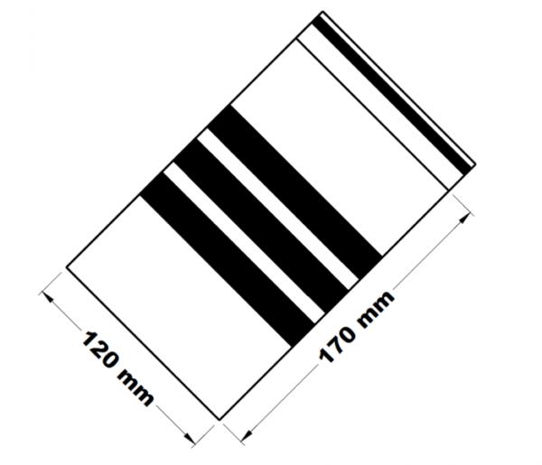 Rychlouzavírací sáčky s popisným pruhem 12 x 17 cm [100 ks]